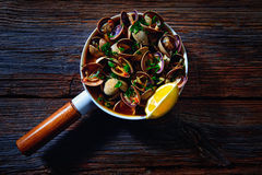 Clams tapa in ceramic pan tapas from Spain Royalty Free Stock Photos