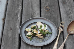 Clams. Royalty Free Stock Photography