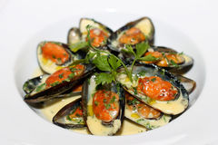 Clams on white plate Royalty Free Stock Photos