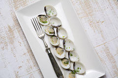 Clams in white wine and parsley in rectangular plate Stock Image
