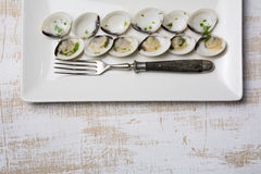 Clams in white wine and parsley in rectangular plate Royalty Free Stock Image