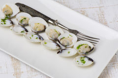 Clams in white wine and parsley in rectangular plate Royalty Free Stock Photo