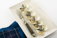 Clams in white wine and parsley in rectangular plate. On wooden table Stock Photography