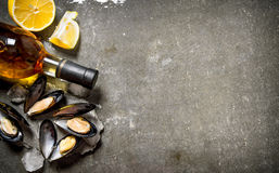 Clams with wine and lemon. On stone table. Stock Photos