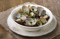 Clams with wine sauce in a bowl Stock Photos