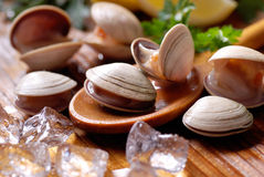 Clams on the wooden table Royalty Free Stock Photography