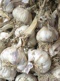 Claoves of garlic. Scene at French market stock photo