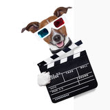 Clapper dog. Clapper cinema dog behind white banner Stock Image