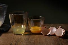 Clara de huevo y yemas de huevo separadas Imagenes de archivo