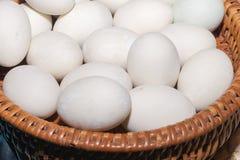 Clara de ovos do ninho imagens de stock