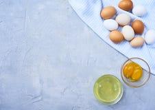 Clara de ovos e yolk separados imagens de stock