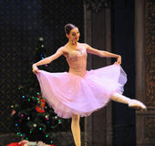 Clara is a girl-The Ballet  Nutcracker Royalty Free Stock Images