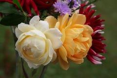 Clare Austin e rosas douradas da celebração no ramalhete do outono foto de stock royalty free