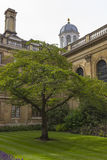Clare College in Cambridge Stock Photography