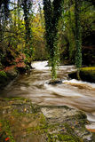Clare Glens Stock Images