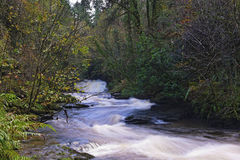 Clare Glens Stock Photo