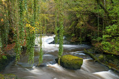 Clare Glens Royalty Free Stock Photography