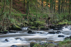Clare Glens Royalty Free Stock Images