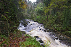 Clare River Royalty Free Stock Image