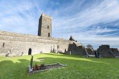 Clarecastle fördärvar abbotskloster i Irland Fotografering för Bildbyråer