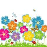 Clareira da flor do fundo do verão Ilustração do Vetor