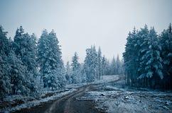 Clareira da floresta que a estrada atravessa às montanhas Morni imagens de stock