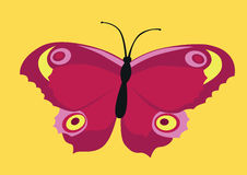 Claret-pink butterfly Royalty Free Stock Images