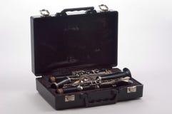 Clarinet nel caso Immagine Stock