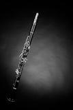 Clarinet Royalty Free Stock Photos
