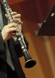 clarinetist koncert Zdjęcia Stock