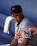 Clark, Baltimore Orioles, παίχτης πρώτης βάσης Στοκ Εικόνες
