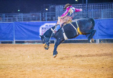 Clark County Fair en Rodeo Stock Afbeeldingen