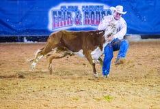 Clark County Fair et rodéo Images stock