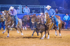 Clark County Fair och rodeo Royaltyfria Bilder
