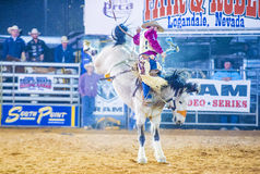 Clark County Fair och rodeo Arkivfoto