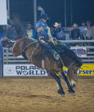 The Clark County Fair and Rodeo Royalty Free Stock Photography