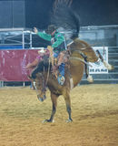The Clark County Fair and Rodeo Royalty Free Stock Photos
