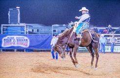 Clark County Fair and Rodeo Royalty Free Stock Images
