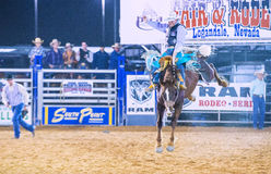 Clark County Fair and Rodeo Stock Images