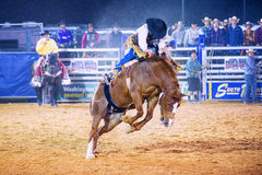 Clark County Fair and Rodeo Stock Photography