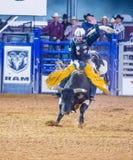 Clark County Fair and Rodeo Stock Photos