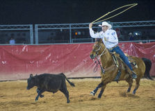 Clark County Fair and Rodeo Stock Photo