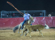 Clark County Fair and Rodeo Royalty Free Stock Photo