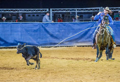 Clark County Fair and Rodeo Royalty Free Stock Photos