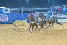 Clark County Fair and Rodeo Stock Photos