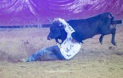 Clark County Fair und Rodeo Lizenzfreie Stockfotos