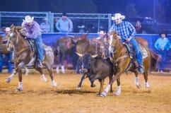 Clark County Fair und Rodeo Lizenzfreie Stockbilder