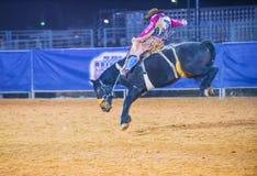 Clark County Fair und Rodeo Stockbilder