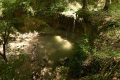 Clark Creek Natural Area lizenzfreie stockfotografie