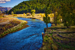 The Clark Fork River Fall Colors Royalty Free Stock Image